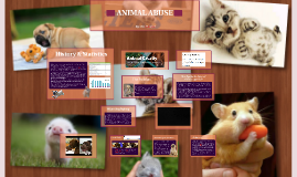 Ethics: Animal Abuse