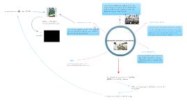mapa mental: laboratorios primarios y secundarios.