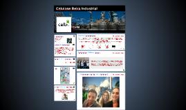 Celulose Beira Industrial
