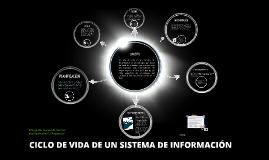 Copy of CICLO DE VIDA DE UN SISTEMA DE INFORMACION
