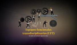 original (compartida)  Equipos funcionales transdisciplinarias (UFT)