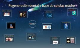 Regeneración dental a base de celulas madre