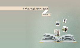A Tree's Life After Death
