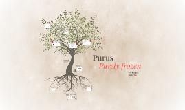 Purus Ice Cream