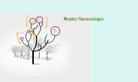 Copy of Modelos Psicosociològico