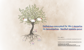 Definition conceptual De Mis Categorias De Investigation- Ma