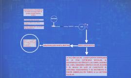 Copy of INVESTIGACION ETNOGRAFICA EN ESCUELAS Y SALONES DE CLASES: L
