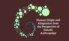 Human Origin and Adaptation from the Perspective of Genetic