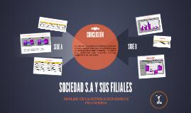 Copy of ANALISIS DE LOS ESTADOS ECONOMICOS FINANCIEROS DE SOCIEDAD S