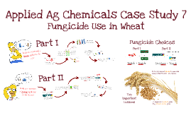 AGRO 2640 Case Study 07 - Fungicide Use in Wheat