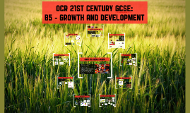 OCR 21st Century GCSE: (B5) Growth and development