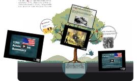 Copy of Copy of USII 3a (Civil War Amendments)