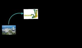 Copy of Copy of BRASIL