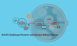 Soluble Urokinase Receptor and Chronic Kidney Disease