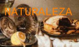 Copy of NATURALEZA