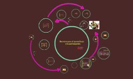Copy of Barreras para el aprendizaje