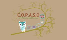 Capacitacion C.O.P.A.S.O.