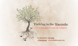 Thriving in the Macondo: Laying down roots as refugees