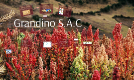 GRANDINO S.A.C