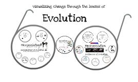 Bio - Evolution