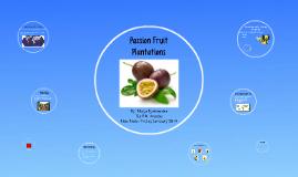 Passion Fruit Plantations
