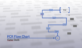 Copy of PCR Flow Chart
