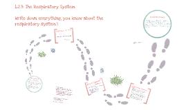 Copy of Copy of Copy of Edexcel GCSE PE Respiratory System