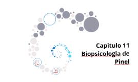 Capitulo 11 Biopsicologia de Pinel