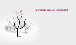 Copy of la contaminacion ambiental