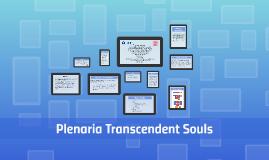 Plenaria Transcendent Souls