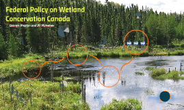 Federal Policy on wetland Concervation Canada