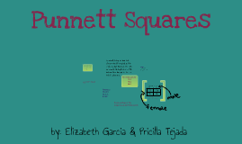 Copy of Punnett Squares