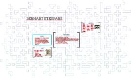 Copy of BERNART ETXEPARE