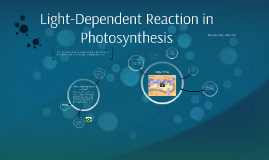 Light-Dependent Reaction in Photosynthesis