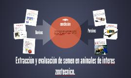 Copy of Extracción y evaluación de semen en animales de interes zoot