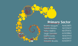 Primary Sector PPT
