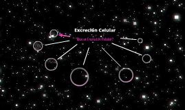 Copy of Copy of Excrecion Celular