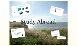 Your Study Abroad Options