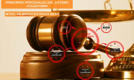 Copy of PRINCIPIOS PROCESALES DEL SISTEMA ACUSATORIO