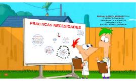 PRACTICA DE NECESIDADES