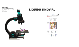 Copy of LIQUIDO SINOVIAL