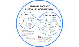 Ciclo de vida del instrumento