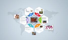 Kakao - von Herstellung bis Vertrieb