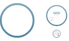 Copy of Comportamiento Organizacional