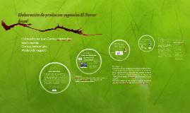 Elaboración de productos vegetales El Tercer Ángel