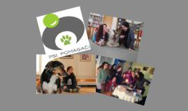 Psi pomagači - volonteri