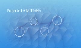 Projecte LA MITJANA