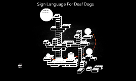 Copy of Sign Language For Deaf Dogs
