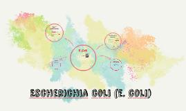 Escheria coli (e. coli)