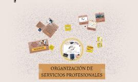 Copy of ORGANIZACION DE SERVICIOS PROFECIONALES